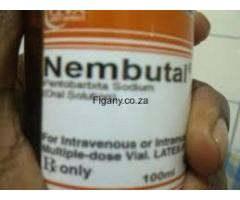 Buy Nembutal Pentobarbital Sodium. call Dr Anna now +27633658233