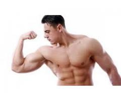 https://musclebuildingbuy.com/ultra-muscle-testo/