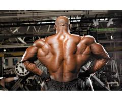 Vital Pieces Of body power