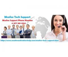 Mcafee Tech Support Toll Free Number +1-877-301-0214