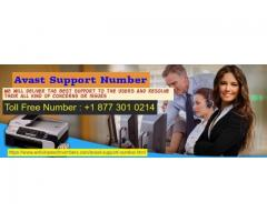 Dial Avast Support Number Now & Have The Best Solutions
