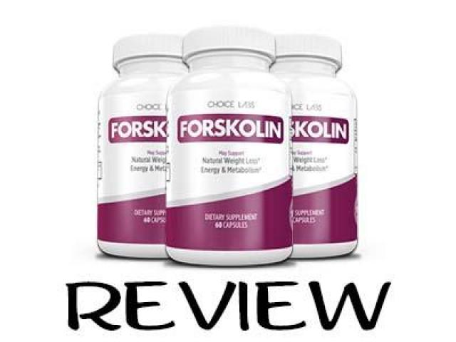 http://topteethwhiteningtips.com/choice-labs-forskolin/