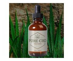 5 Questions To Ask At Pure CBD Tincture.