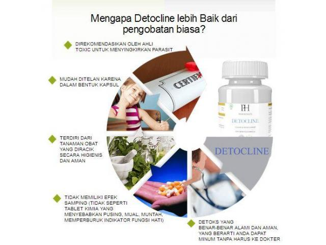 DETOCLINE HARGA STRONGLY CLEANSE THE WHOLE BODY