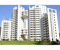 Apartments on Rent at Parsvnath Exotica- Golf Course Road Gurgaon