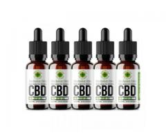 How Does Work We The People Cbd Oil  Inside Your Body?