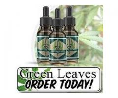 Overview of Green Leaves CBD Oil!