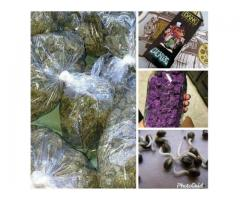 BUY CANNABIS PRODUCTS ONLINE