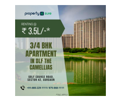 Residential Property For Rent In Gurgaon