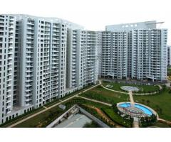 Service Apartments in Gurugram for Rent