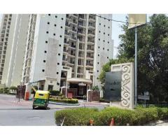 Dlf The Summit for Rent on Golf Course Road Gurgaon