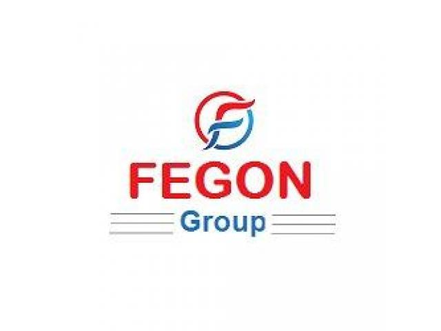 Fegon Group Reviews and Ratings