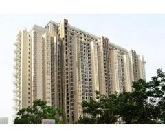4 BHK Flats in DLF The Magnolias Gurgaon