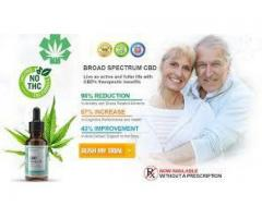 How does Canzana CBD oil work in the body?