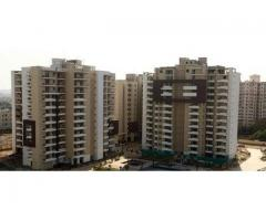 TDI Ourania for Rent on Golf Course Road Gurgaon