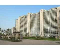 4 BHK Apartments For Rent in Gurgaon – DLF The Magnolias on Golf Course Road