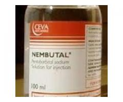 Buy Nembutal Pentobarbital Sodium. Call Dr Sherry now +27632855179