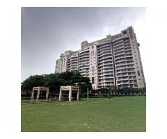 Apartments For Rent on Golf Course Road | DLF The Aralias Gurugram