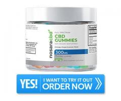 https://fast10reviews.com/nosara-cbd-gummies/