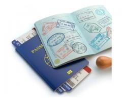 Buy a Real Passport Online & Travel the World
