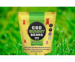 10 Things You Need To Know About Green CBD Gummies Dragons Den Today.