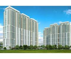 Service Apartments on Golf Course Road – DLF The Camellias in Gurgaon For Sale