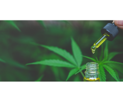 Essential CBD Extract  South Africa Reviews, Scam or Where to Buy
